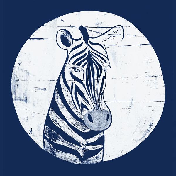 Zebra_Cyanotype_12x12