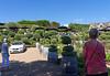 Dining area, Mudbrick Bistro and Winery, Waiheke Island