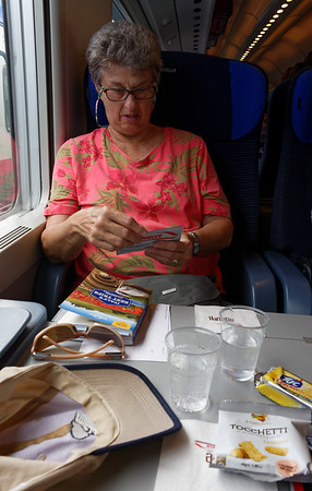 High speed train to Verona, drinks and snacks provided