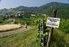 "Mondo Antico, Gaminara walk, ""Fauna Hunting Company"" sign"