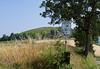 Mondo Antico, Gaminara walk, the vineyard hill