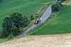 DAY 6:  Mondo Antico (old world) agriturismo, farming scene
