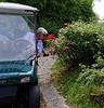 Valeggio, Parco Sigurta Giardino; Brant stops to smell the roses