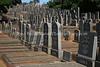 ZA 10000  Stellawood Jewish Cemetery  Durban, South Africa