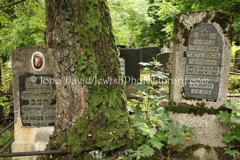 LT 1151  New Jewish Cemetery  KAUNAS, LITHUANIA