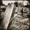 Jewish Cemetery  Bialystok, Poland