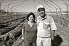 ZA 13340  Jeffrey and Beverley Zetler, Zetler Farming Enterprises  Near Stellenbosch, South Africa