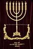 ZA 9328  Durban Hebrew Congregation Orthodox Synagogue (aka the Great Synagogue)  Durban, South Africa