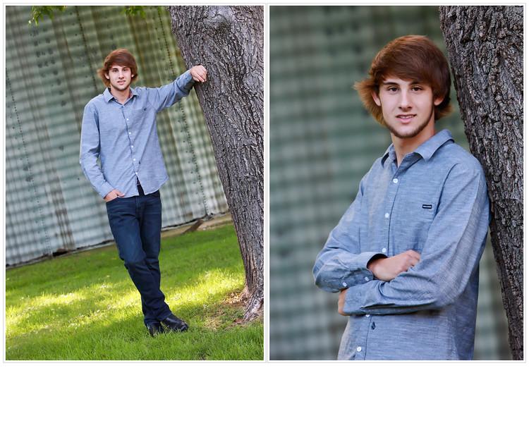 Joe Tabenske Collage 8X10 tree