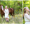 Kaitlyn Sallans 8X12 collage Equine