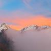 Himalayan Flaming Crown / Гималайская пламенная корона