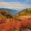 The Living Beauty of the Himalayas / Живая красота Гималаев
