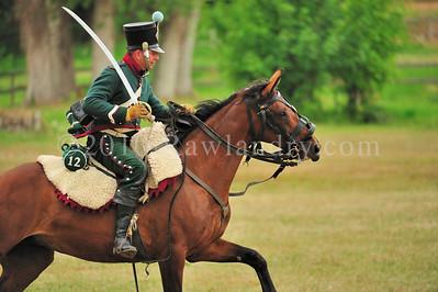 Napoleon 1er au Haras du Pin DSC_0956