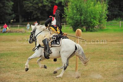 Napoleon 1er au Haras du Pin DSC_0926