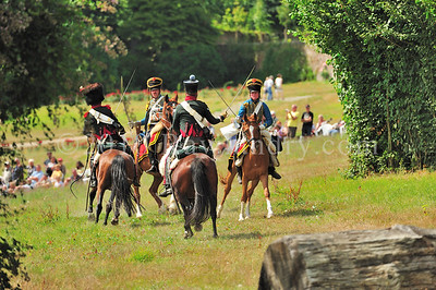 Napolean 1er au Haras du Pin DSC_1424