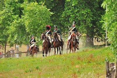 Napolean 1er au Haras du Pin DSC_1250
