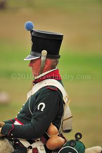 Napolean 1er au Haras du Pin DSC_1063