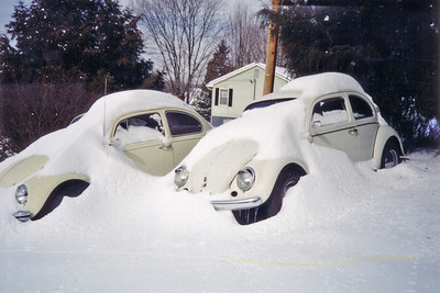 1970 and 1962 Beetles