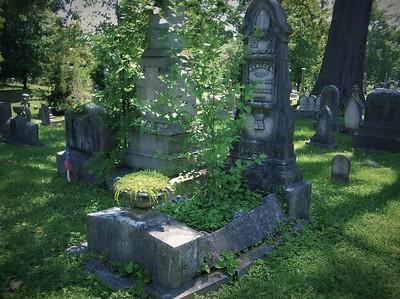 Rebecca Woodward Eckle (8/25/1825-4/26/1880)