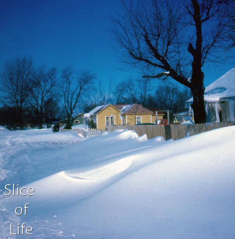Slice of Life Volume 4