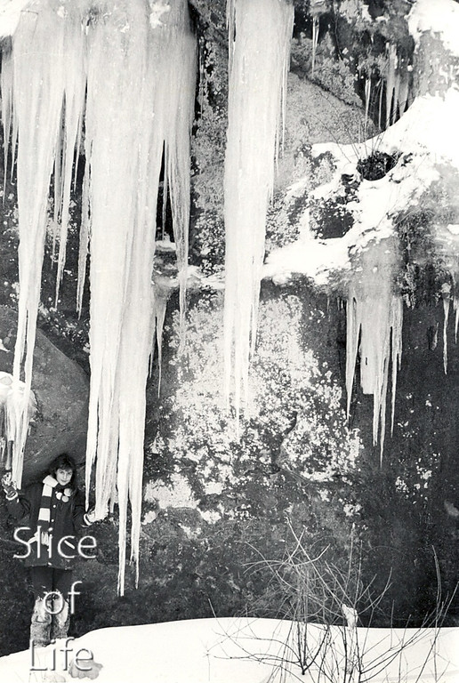 Slice of Life Volume 13
