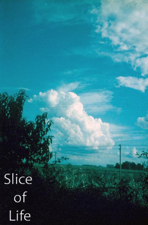 Slice of Life Volume 6