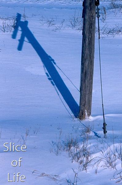 Slice of Life Volume 24
