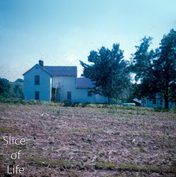 Slice of Life Volume 5