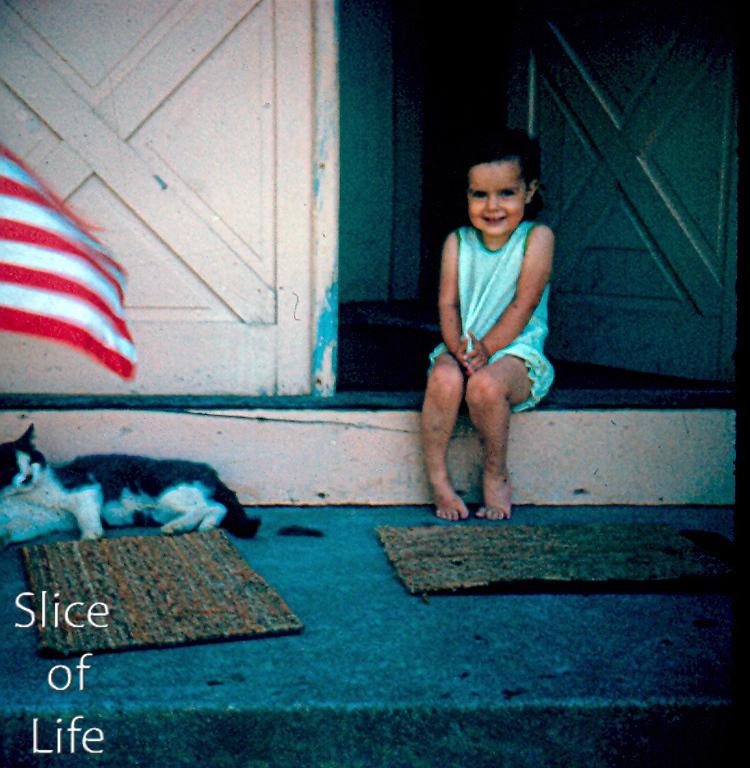 Slice of Life Volume 23