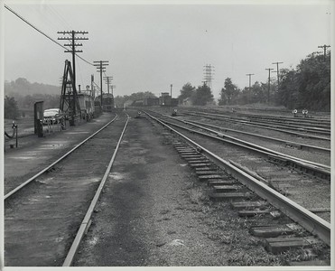 Lower Yard of Buttonwood Yards (1960)