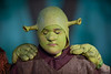 HITS Shrek Juniors 1 cast
