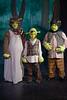 HITS Shrek Bridge 1 cast
