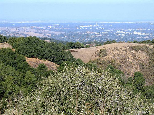 Looking toward Palo Alto and Stanford University