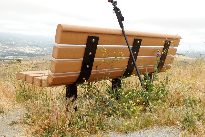 """My"" bench at Coyote Peak, where I've sat many a time, sometimes composing poems. Note the wild mustard and thistles."