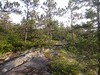 Very pleasant trail
