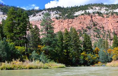 Wild & Scenic Chama River.