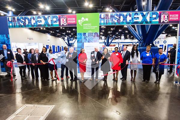 HMSDC EXPO 2017