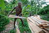 A man who makes his living hand sawing lumber from trees in Milot, Haiti. <br /> Photos from Hopital Sacré Coeur, the CRUDEM foundation, and Holy Name Medical Center's involvement in Milot, Haiti.  Photo by Jeff Rhode / Holy Name Medical Center 6/14/12