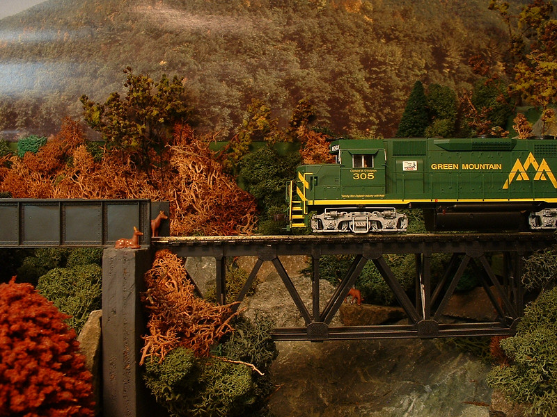 GMRC 305 meets deer on bridge