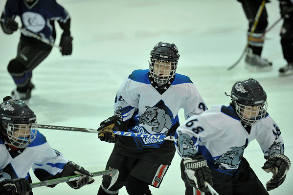 Hockey 2008-2009