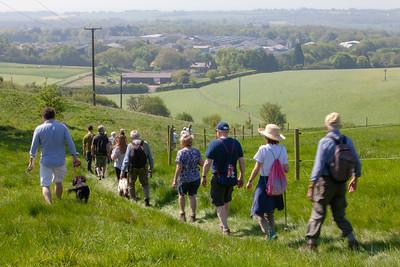 20180506 Bluebell Walk