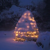 Holiday tree illuminated through fresh snow, Phippsburg Maine
