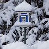 Blue birdhouse cloaked in snow in the trees, Phippsburg, Maine winter scenic. This would make a nice holiday card.