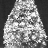Holiday tree with lights in snow, study in black and white, Phippsburg, Maine winter