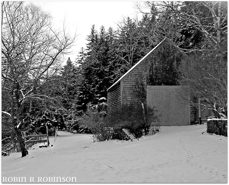 rustic barn in snow, West Point, Phippsburg, Maine