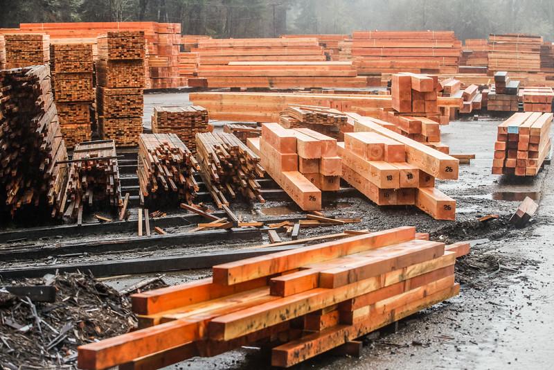 Hull Oakes Timber