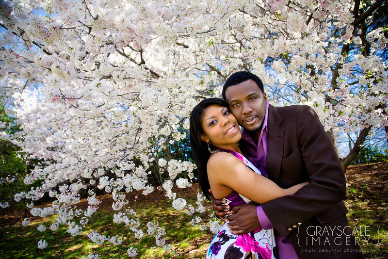 couple under blooming bradford pear trees