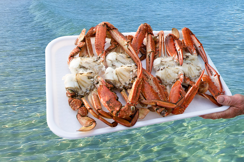 A platter of freshly caught and cooked Blue Swimmer Crabs