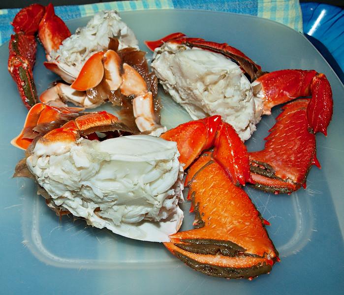 Spanner or Red Frog Crab. Ranina ranina.