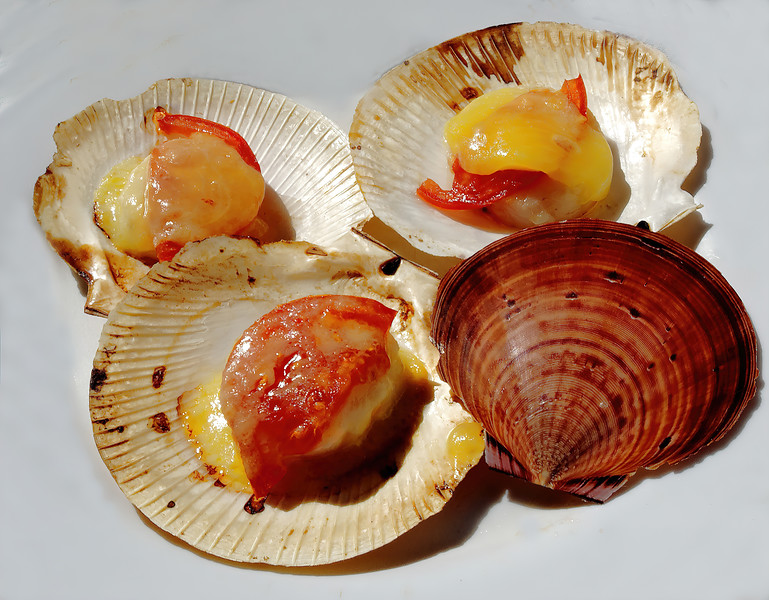 Succulent Grilled Scallops in their shells.